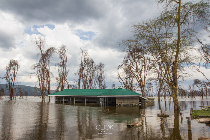 Lake_Nakuru_Flood-22