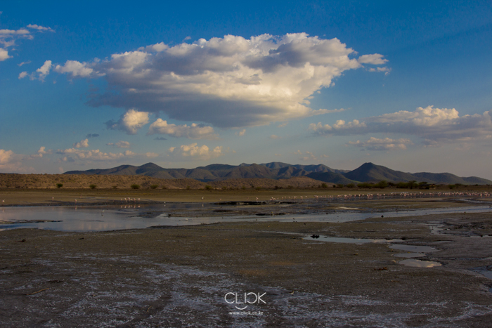 Lake_Magadi-2
