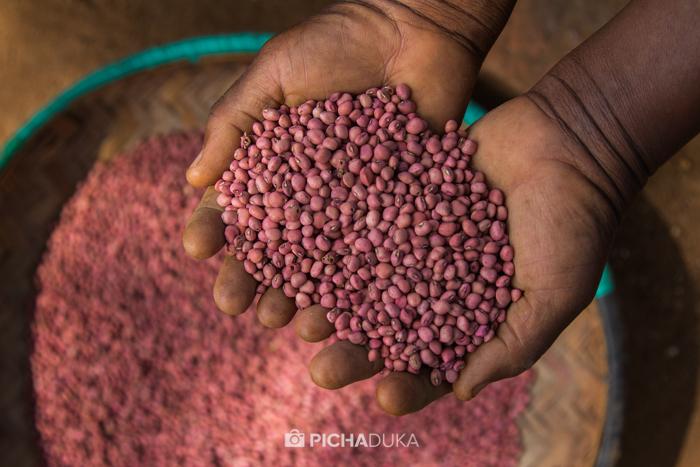 Farm_Africa_Kitui_by_Mwangi_Kirubi-6