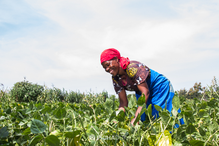 Farm_Africa_Kitui_by_Mwangi_Kirubi-7