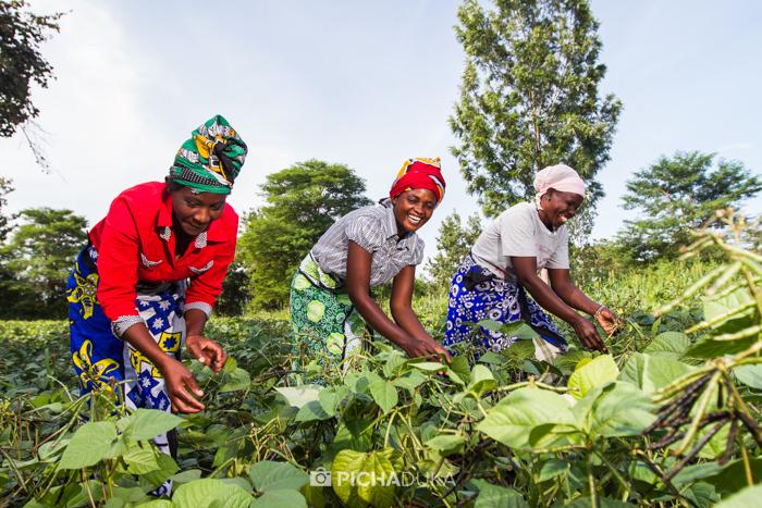 Farm_Africa_Kitui_by_Mwangi_Kirubi-9