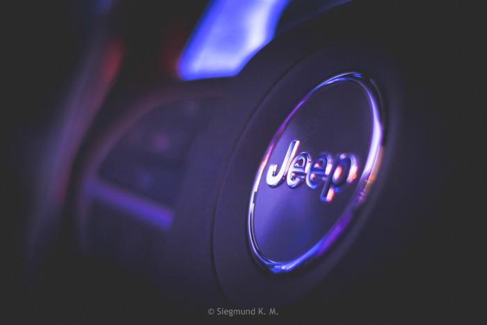 Total-Motor-Show-21