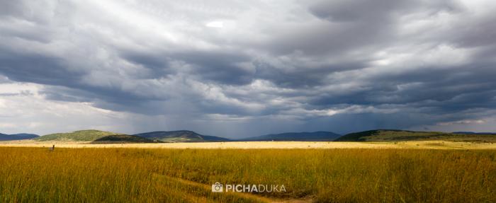 Masai_Mara-by-Mwangi_Kirubi-38