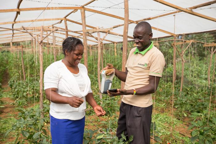 SoilCares-Meru-Mwangi-Kirubi-14