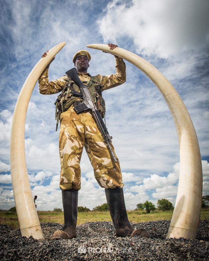 Ivory-Burn-Kenya-1