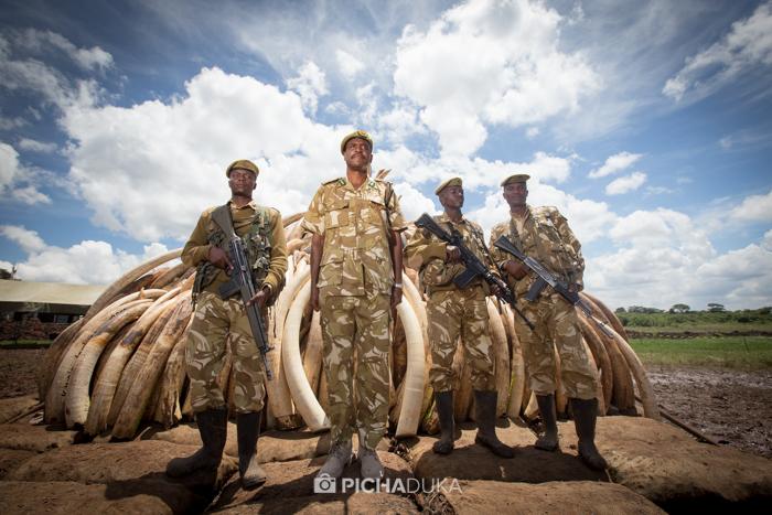 Ivory-Burn-Kenya-11