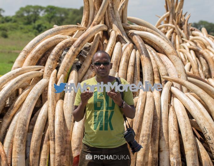 Ivory-Burn-Kenya-22