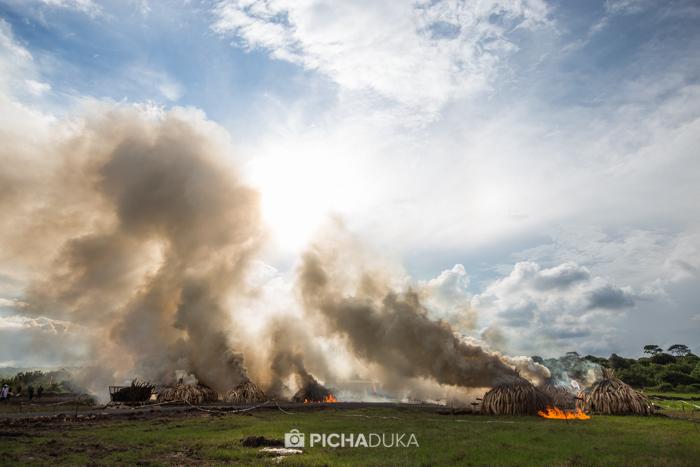 Kenya-Ivory-Burning-31