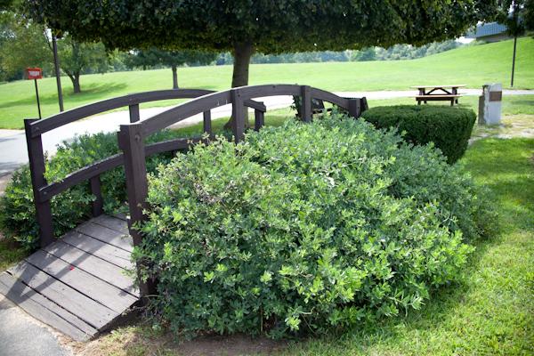 PTK Gardens