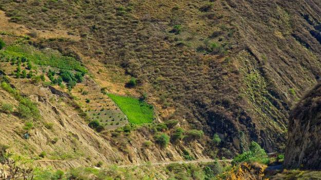 steile Felder