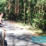 horsing-riding-stcroix