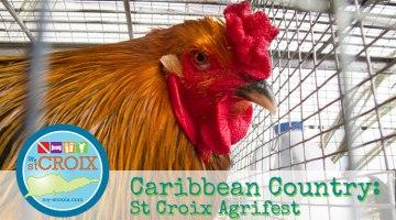 St-Croix-Agrifest