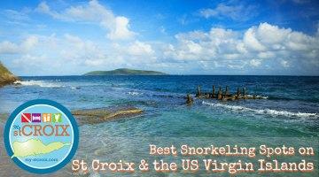 Best Snorkeling St Croix Virgin Islands