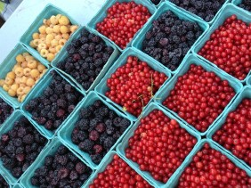 PHOTO: Different kinds of berries in baskets, lined up in a grid.