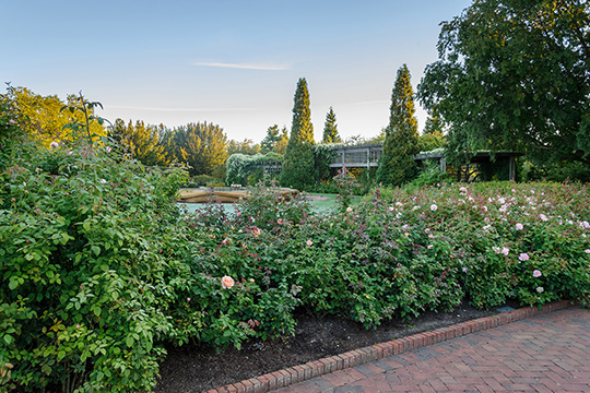 View 4: The Rose Garden in fall