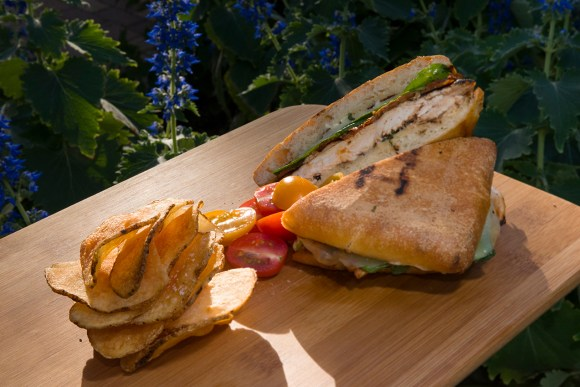 PHOTO: Sandwich of grilled chicken breast, local white cheddar, roasted tomato, lemon-basil mayo, sourdough ciabatta.