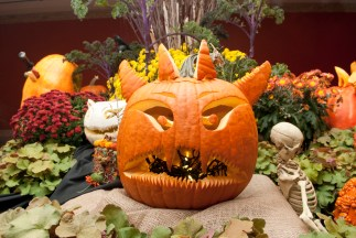 PHOTO: A devilish pumpkin with lots of pointy teeth.
