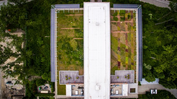 PHOTO: View of the Green Roof Garden from above.