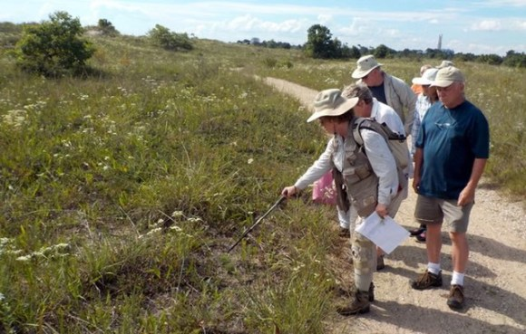 Kathy Garness leads a tour at Illinois Beach State Park.