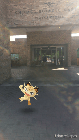 PHOTO: Meowth Pokémon at the Visitor Center entryway.