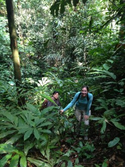 PHOTO: Dr. Zerega and Dr. Joan Pereira climbing hill in tropical forest.