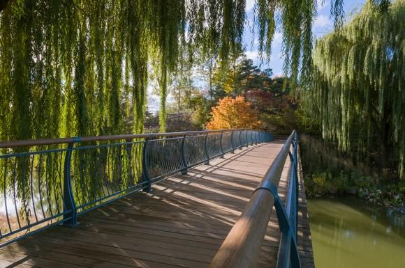 PHOTO: Arch Bridge.