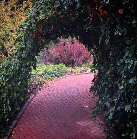 PHOTO: Home Landscape Garden.