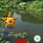 PHOTO: Staryu Pokémon in the Skokie Lagoons.