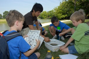PHOTO: Camp CBG boys study lake water.