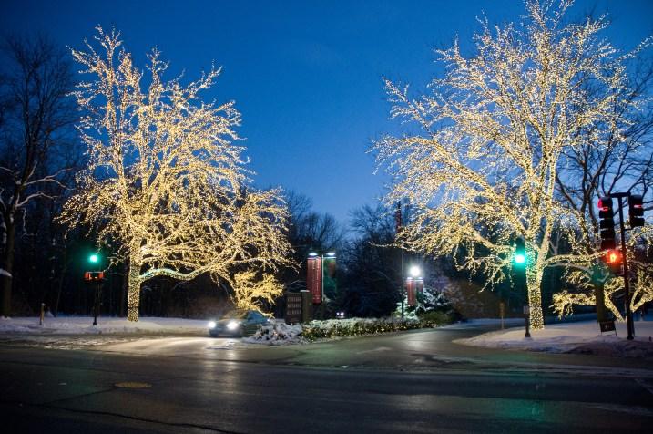 lights hanukkah_rjc4528