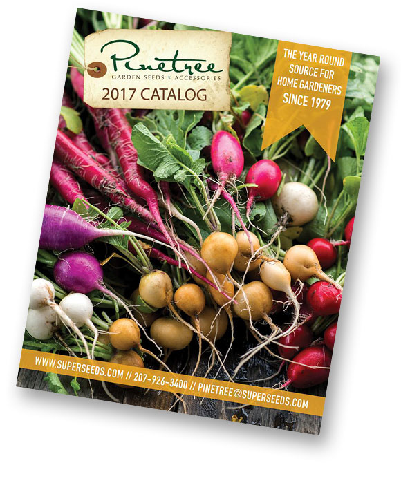 Demystifying Seed Catalogs My Chicago Botanic Garden