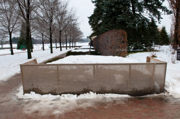PHOTO: a burlap fence protects the Esplanade hedge from wind and deicing grit.