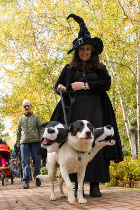 "PHOTO: Spooky Pooch parade favorite Cerberus (or ""Fluffy"" to Harry Potter fans) ""pawses"" for a photo op."