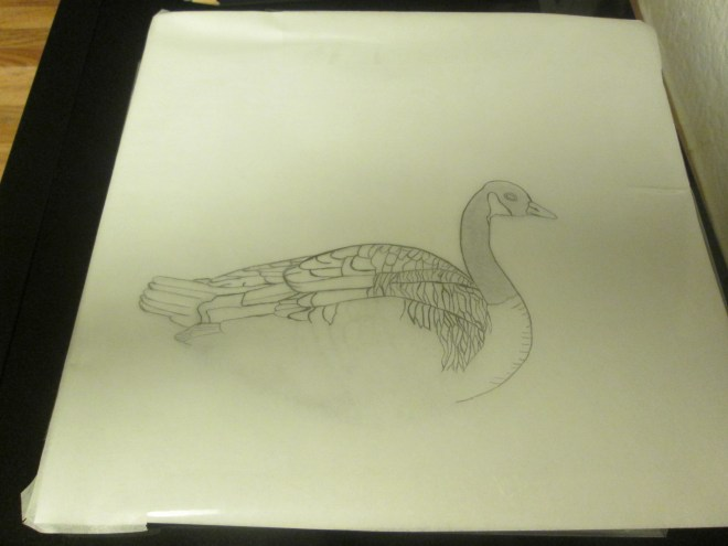 Continuing to trace the goose.