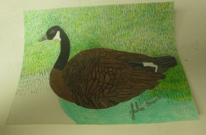 I used several different shades of colored pencils to color in the grass.
