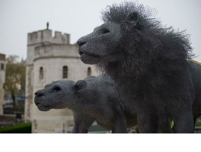 13. Lions, Tower of London