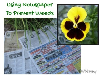 Garden Trick Fight Off Spring Weeds Naturally At