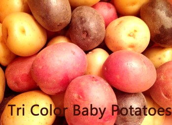 Tri Color Baby Potatoes