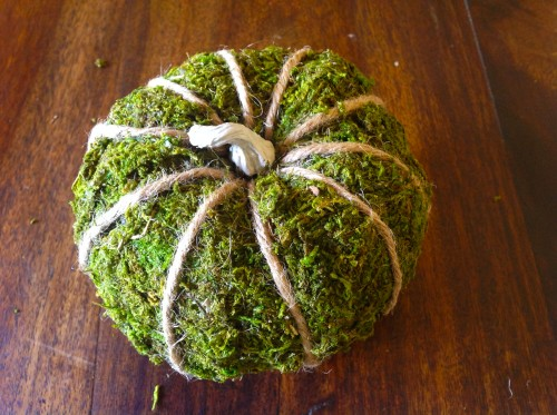 Finished Moss Pumpkin