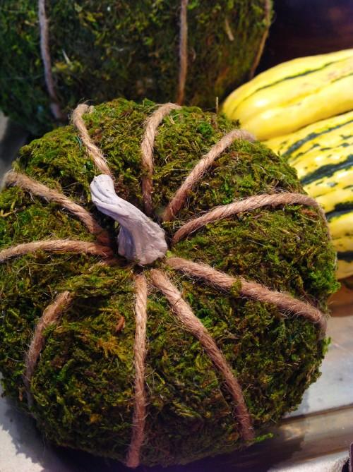 Moss Covered Pumpkin