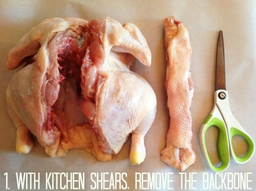 With Kitchen Shears - mydearirene