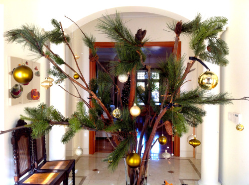 Best Pine Branches - mydearirene