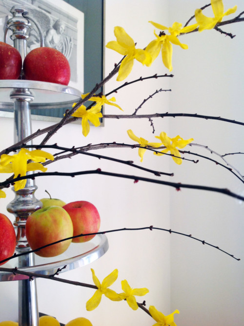 Branch-And-Apples-mydearirene-765x1024