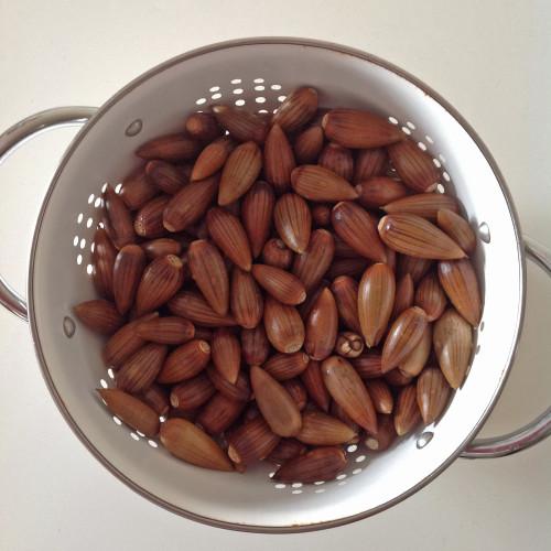 Rinsing Acorns - mydearirene.com