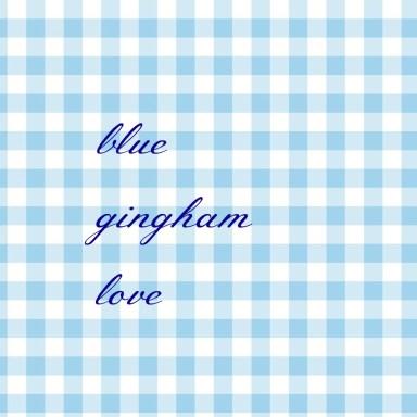 Blue Gingham Love