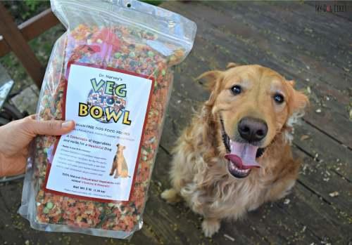 Medium Of Dinovite Dog Food