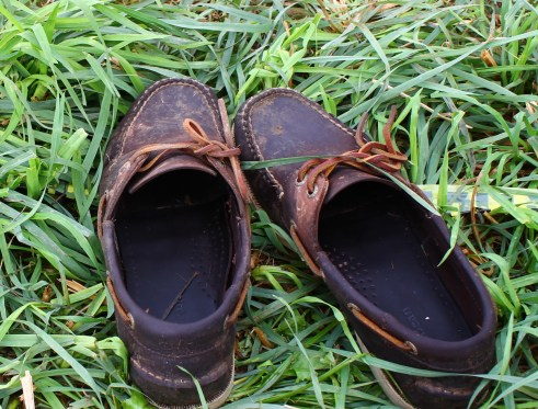 the much loved Sperrys on vacation at the Falcon Ridge Folk Festival last summer.