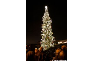 The tree is officially lit for all of Edmonds to enjoy. MyEdmondsNews photo by Greg Urban/Ideas Unfold
