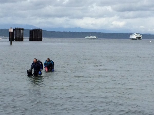 Clouds don't matter when you're underwater and the Edmonds Dive Park was a popular destination, as always, Saturday morning.. (Photo by David Carlos)