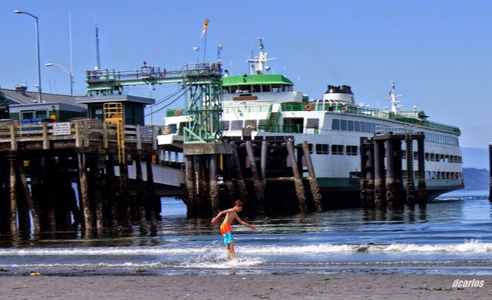A boy skimboards along the Brackett's Landing shoreline.